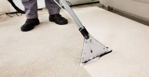 Carpet cleaning Idaho Falls Steam Cleaner – Carpet Cleaning Steps