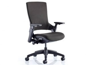 5 Best Office Chairs with Adjustable Armrest [Lumbar Support, Height Extender]